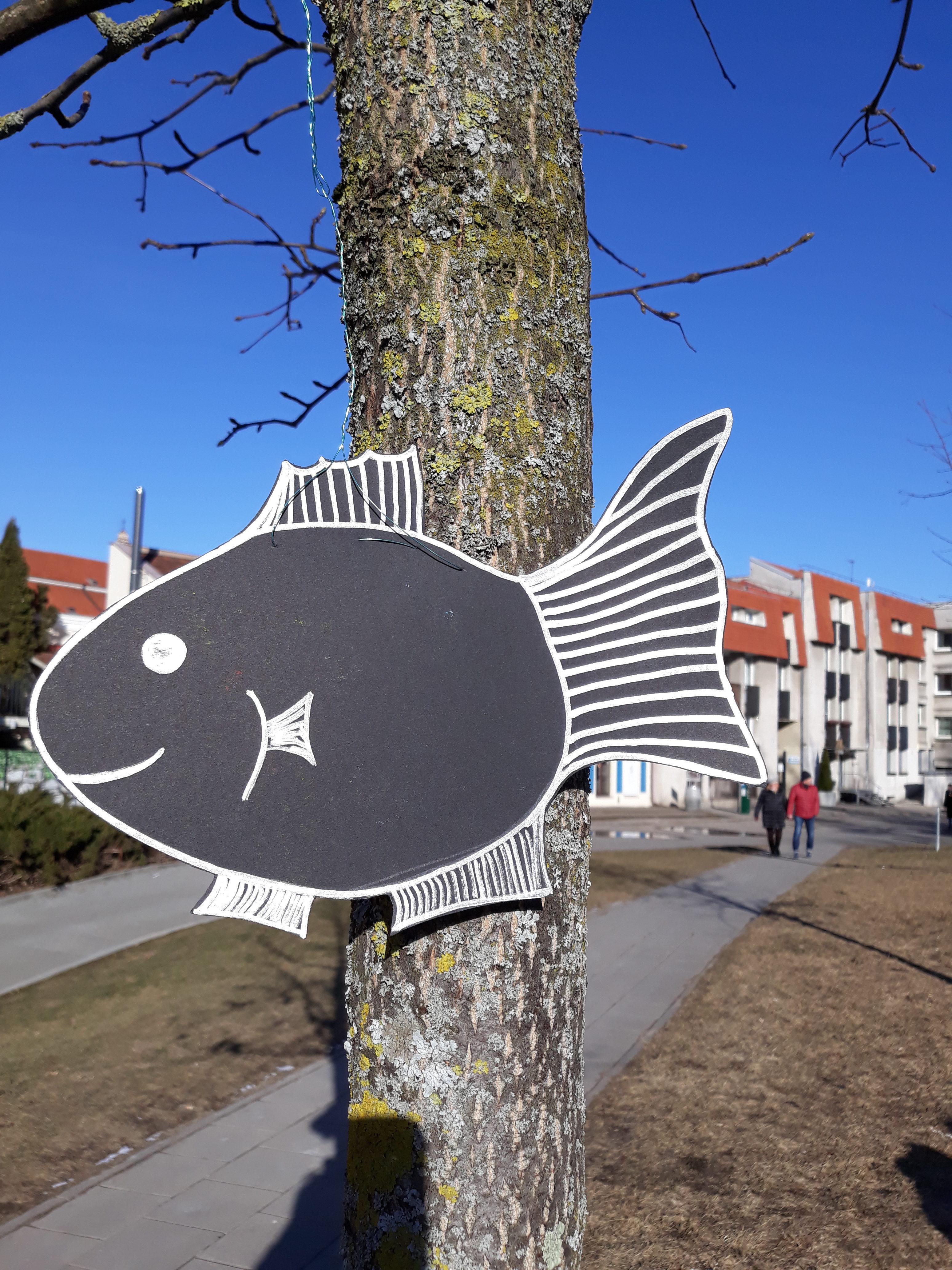 Рыбы. Вильнюс. Часть вторая :)